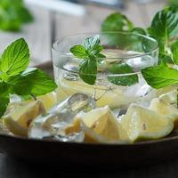 frischer Mojito mit Zitrone, Minze, Eis und Zucker