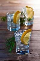 Gin mit Zitronen-Wacholder-Zweig foto
