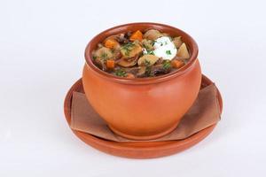Suppe, Pilze, Karotten, Sauerrahm, Topf, isoliert, weiß, Hintergrundmenü foto