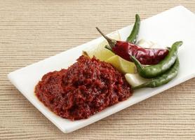 Knoblauch und kühles Chutney mit Roti, indischem Essen foto