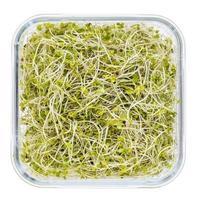 Brokkoli und Rettichsprossen foto