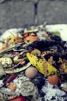 organischer Abfall foto