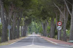 Straße. foto