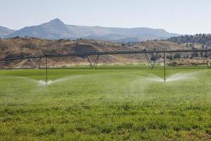 automatisierte Bewässerung foto
