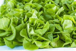 frisches Bio-Obst und Gemüse auf dem Bauernmarkt