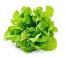 Salat isoliert auf weißem Hintergrund. Salatblätter foto