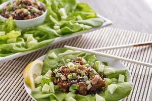 Hoisin Hummer Salat Wraps