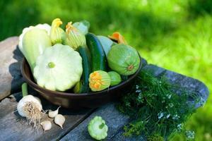 frisch gepflückte Zucchini und Kürbis auf Gartentisch foto