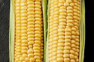 frischer saftiger Bio-Mais, Nahaufnahme foto