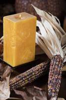 Kürbisse und Mais für Thanksgiving-Dekor