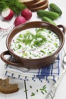 kalte Sommersuppe mit Joghurt und Gemüse foto