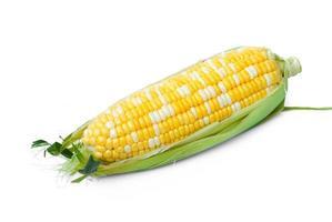 Mais gelb und weiß gut für den Hintergrund foto