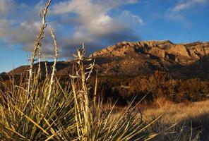 Sonnenuntergang im südwestlichen Wüstenberg mit Yuccas foto