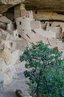 Mesa Verde Turm foto