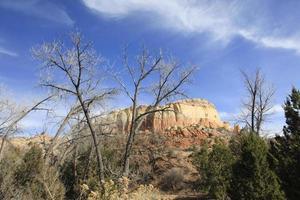 New Mexico Mesa und Bäume foto