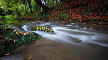 Fluss fallen foto