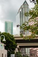 Tampa foto