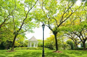 Botanischer Garten Singapur, Singapur