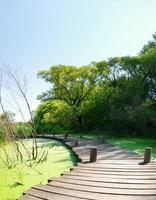 Sumpfpromenade