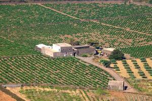 Plantage, Pantelleria foto