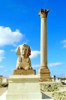 Sphinx und Pompeius Säule