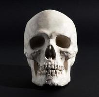 menschlicher Schädel auf einem schwarzen Hintergrund