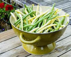 Schüssel mit frisch gepflückten gelben und grünen Bohnen foto