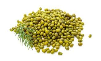 grüne trockene Bohnen foto