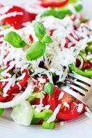 bulgarischer Salat foto