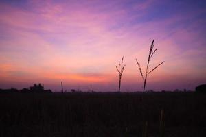 Landschaften foto