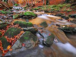 Herbstlandschaft mit Bäumen und Fluss foto