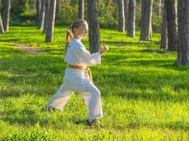 Karate foto