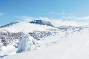 weiße schneebedeckte Winterhügel