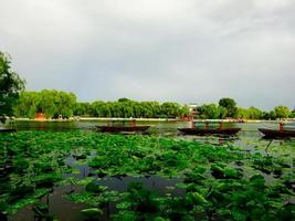 Peking See