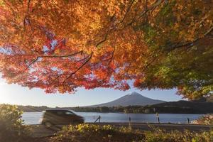 Ahornblätter wechseln bei mt.fuji, Japan, zur Herbstfarbe