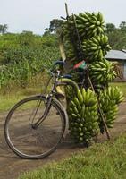 Bananenfahrrad foto