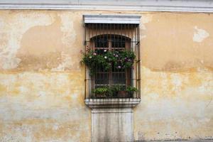 spanisches Kolonialfenster in verblasste gelbe Wand gesetzt foto