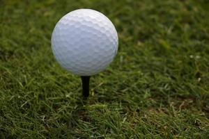 weißer Golfball auf einem Abschlag foto