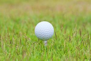 Golfball auf Tee über einem verschwommenen Grün foto