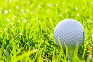 Makro eines Golfballs im grünen Gras