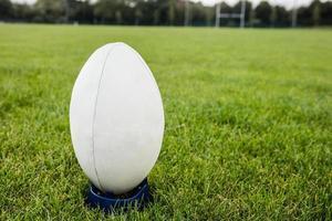 Rugbyball auf dem Spielfeld foto