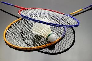 Badminton gesetzt