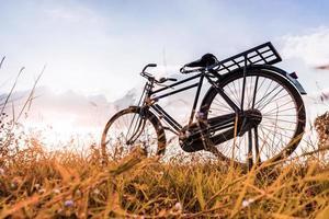 Vintage Fahrrad mit Sommerwiese foto