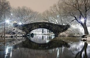 Central Park NYC nachts im Winter