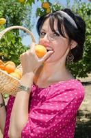 fröhliche Brünette, die Früchte pflückt foto
