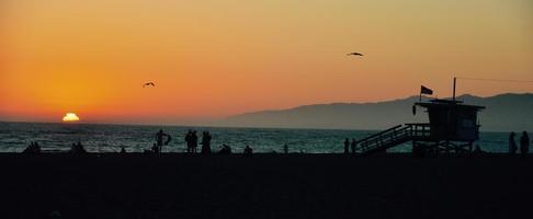 Vögel fliegen bei Sonnenuntergang foto