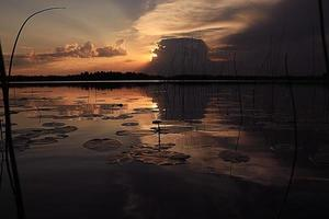 Sonnenuntergang auf der roten Sommerlandschaft des Sees