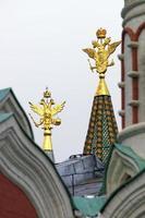 Nationales Emblem der Steinadler von Russland
