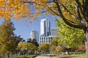 Charlotte im Herbst foto