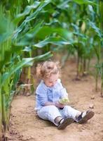 entzückendes kleines Baby, das im Feld sitzt und mit Mais spielt